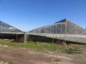 campu-giavesu-serre-fotovoltaiche